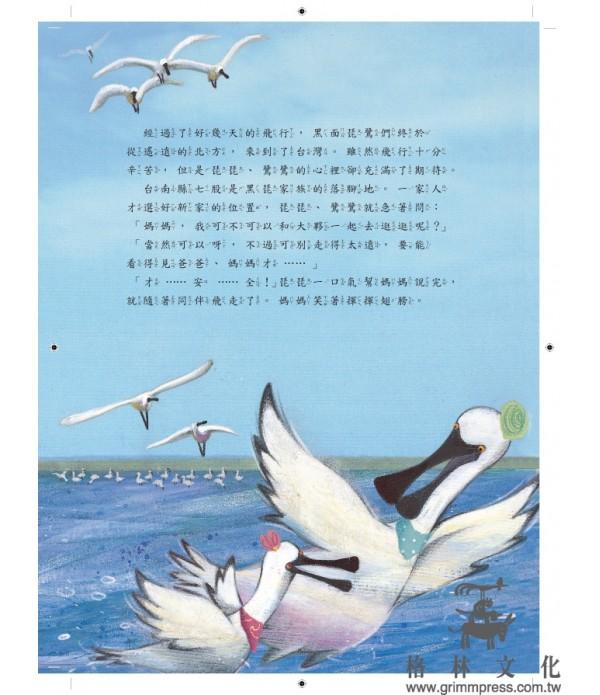 黑面琵鷺來過冬